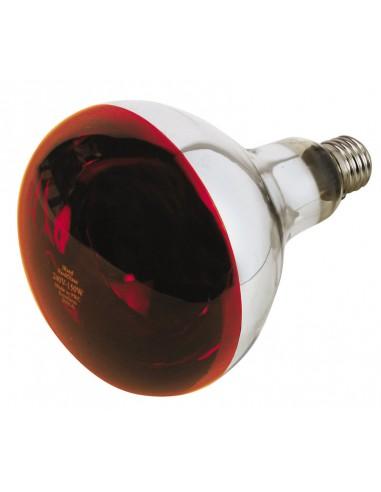 Lampada ad Infrarossi E27 240 V 150 W Philips IR RH | Dpsbrico.it - 28770